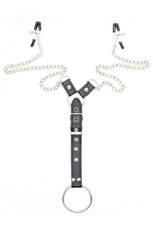 Adjustable Nipple Clamps with O Ring