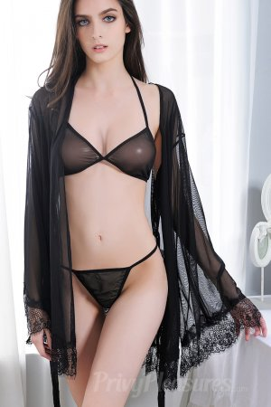 Black Sheer Mesh And Eyelash Lace Robe Set Full Set