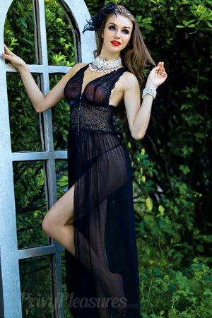 Black Sheer Lace Evening Gown