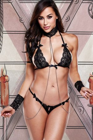Sexy Black Lace Bra Panty Set with Collar and Cuffs