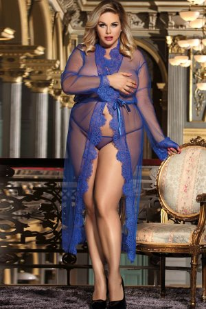 Blue Transparent Lace Gown - Plus Size