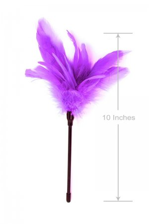 Foreplay Feather Tickler - Voilet