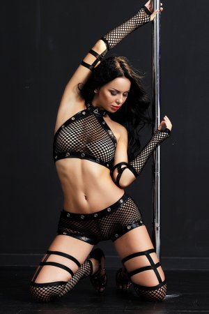 Erotic Seduction Sexy Black Fishnet Lingerie - Full Set