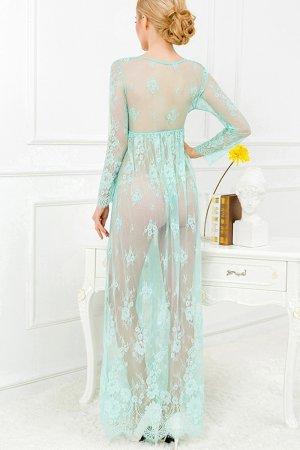elegant transperant gown